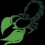 skorpion-zodiac-poznie
