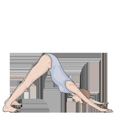 adho-mukha-svanasana