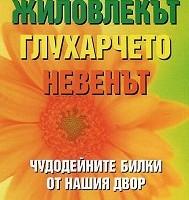 Чудодейни билки от нашия двор: Жиловлекът, глухарчето, невенът, Росица Тодорова