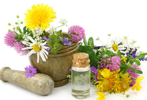 poznanie-za-bilkite-kato-alternativna-medicina