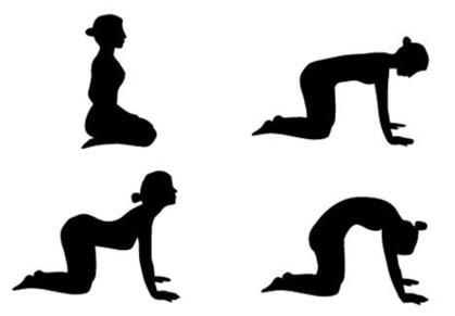 yoga_marjari