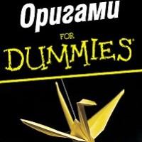 Оригами for Dummies, Ник Робинсън